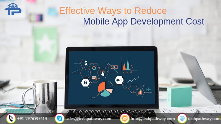 reduce-the-app-development-cost