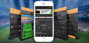 How much does it cost to develop a Sports Fantasy website and application